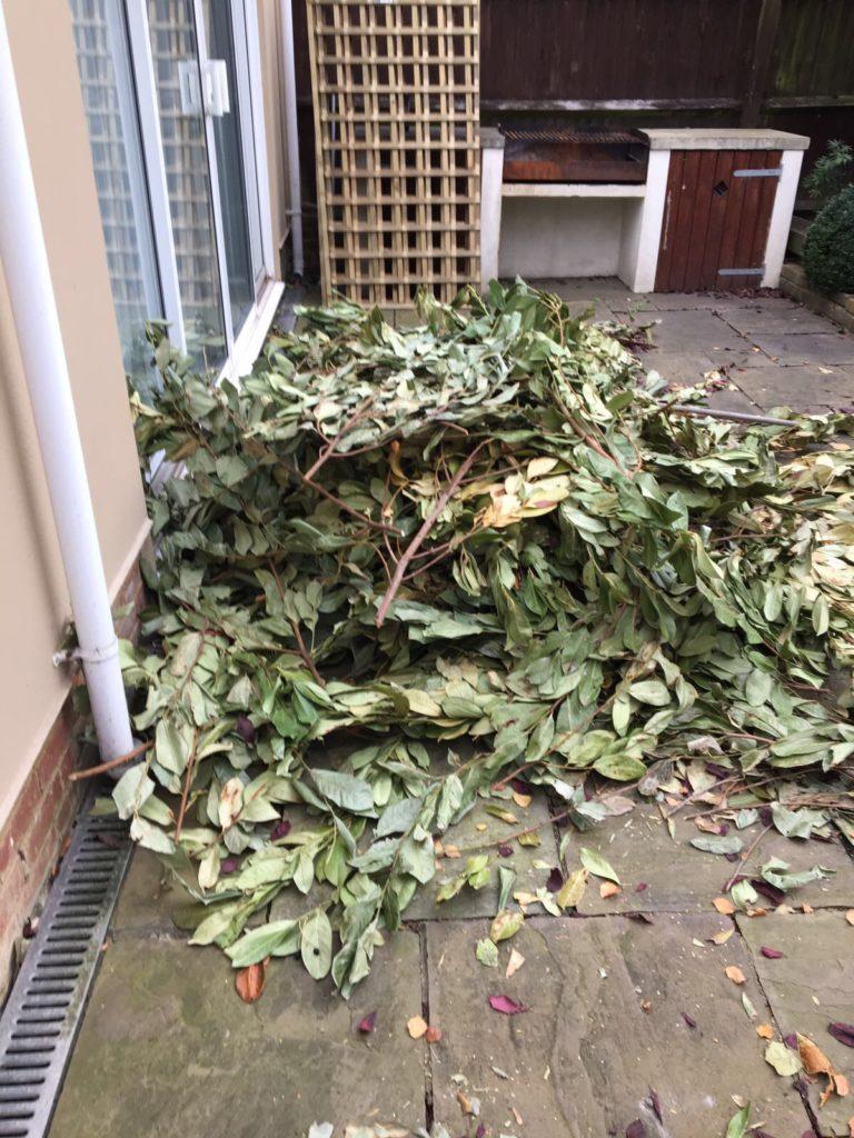 garden waste clearance in London