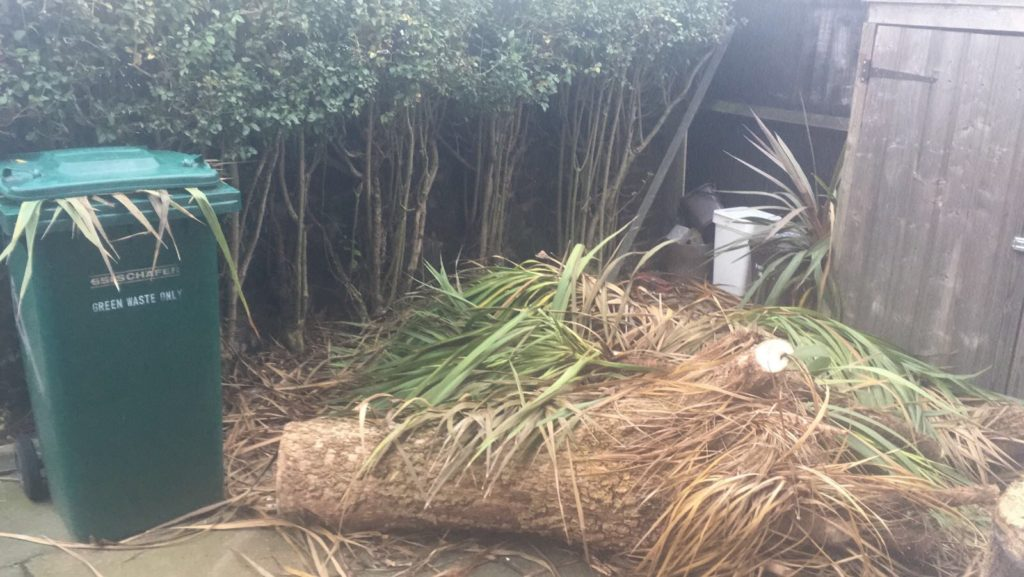 tips to clear the garden wastes in London