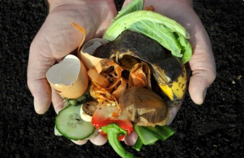 garden waste composting