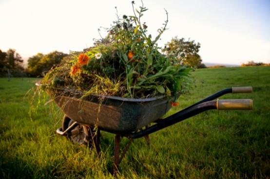 Garden wastes