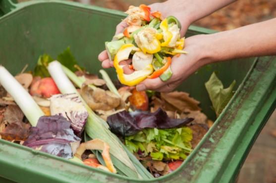 how to reduce Garden Waste Accumulation
