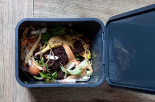 Clearing yard wastes