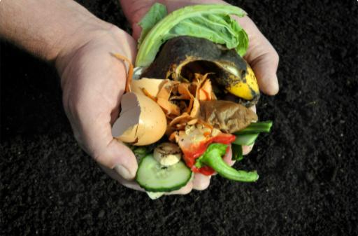 Handling kitchen wastes