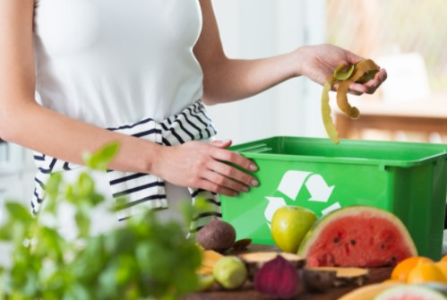 recycle household wastes