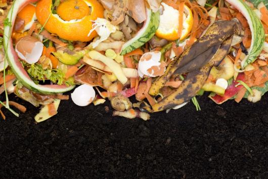 Composting Process