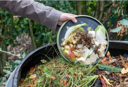 Turn kitchen wastes into compost