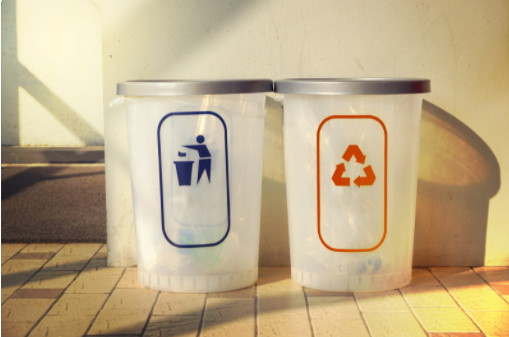Impact of Waste on Environment